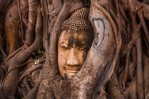 "<span class=""dojodigital_toggle_title"">Ayutthaya en un día</span>"
