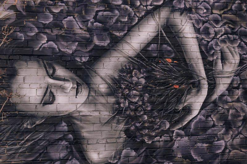graffitis penelles